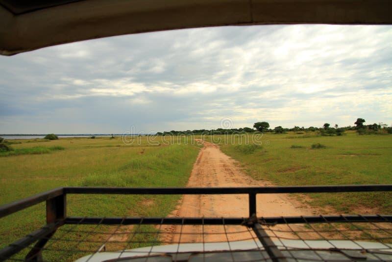 Vista de Safari Truck fotografia de stock royalty free