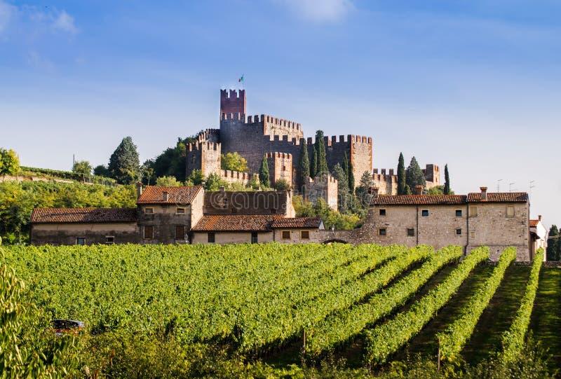 Vista de Soave (Italia) y de su castillo medieval famoso imagenes de archivo