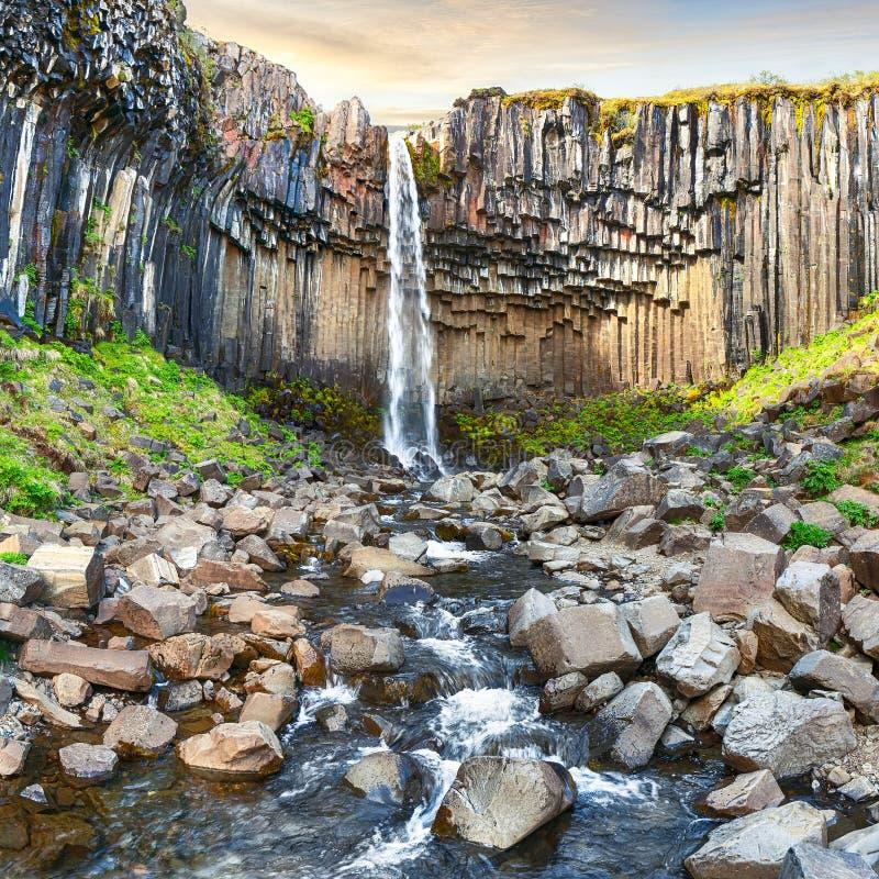 Vista de surpresa da cachoeira de Svartifoss com as colunas do basalto em Islândia sul imagens de stock royalty free