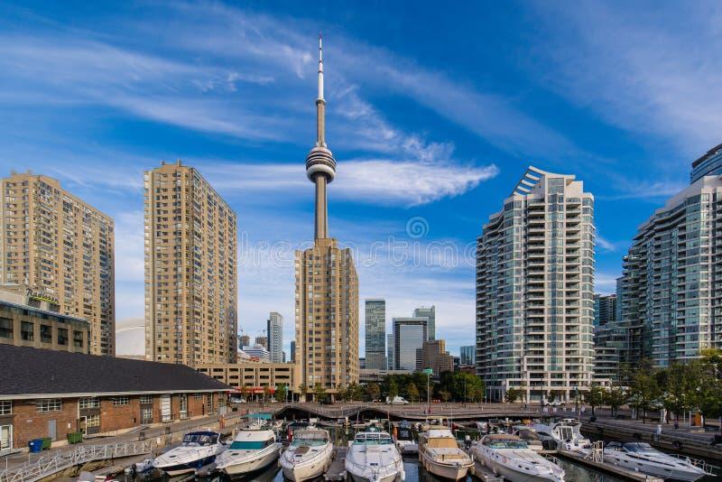 Vista de Toronto del puerto deportivo fotografía de archivo