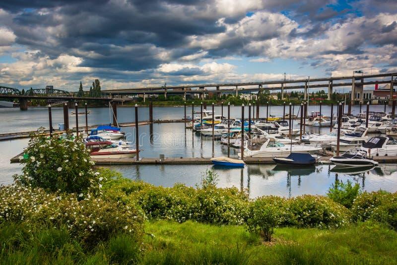 Vista de um porto na margem em Portland imagem de stock royalty free
