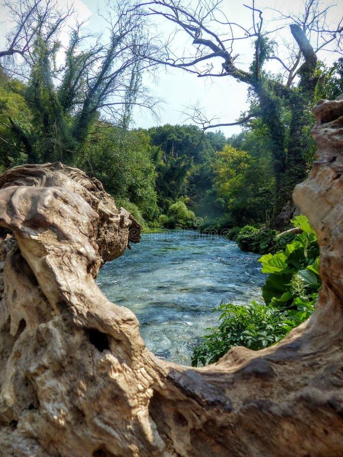Vista de um rio que flua de um tronco de árvore dobrado acima do que poderia parecer uma janela natural imagens de stock