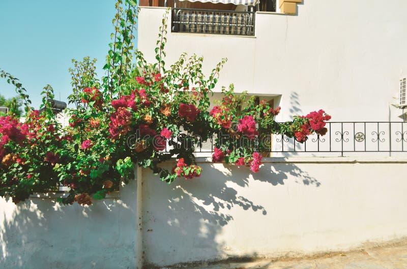 Vista de uma casa tradicional de Bodrum fotografia de stock royalty free