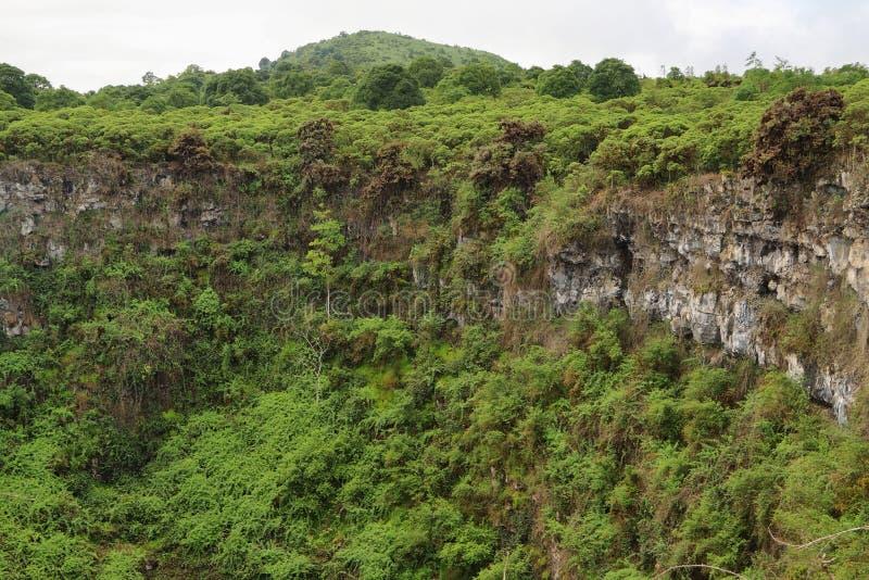 Vista de uma das crateras vulcânicas gêmeas nas montanhas de Santa Cruz fotografia de stock