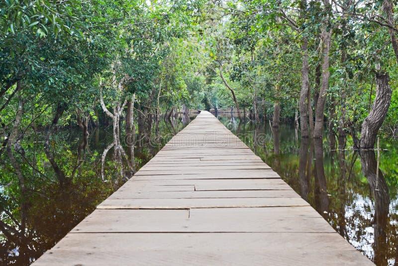 Vista de uma ponte de madeira fotos de stock