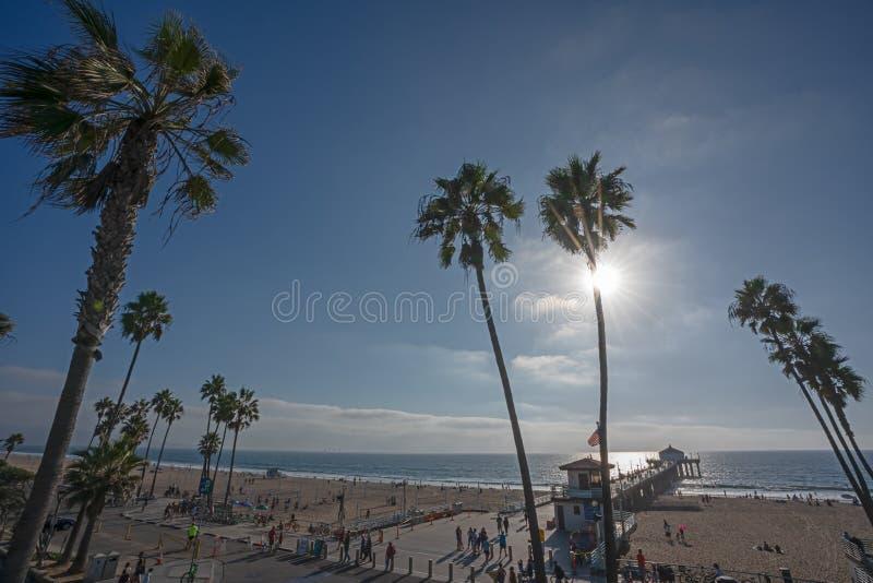 Vista de un Manhattan Beach con el embarcadero y las palmeras en Califo fotos de archivo libres de regalías