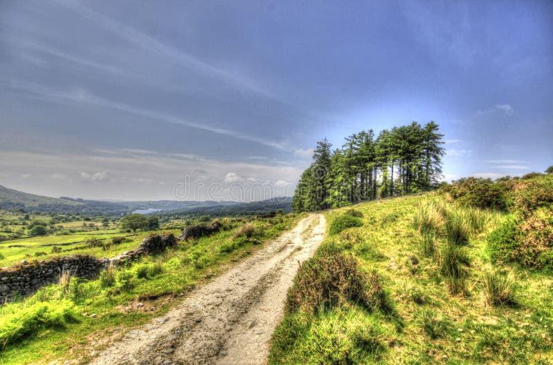 Vista de una pista en Dartmoor imagenes de archivo