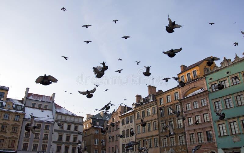 Vista de Varsovia vieja con las palomas fotografía de archivo