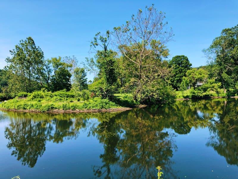 Vista de verão do rio Shepaug fotografia de stock royalty free