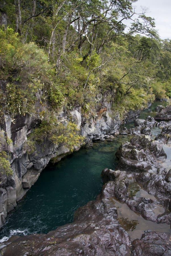 Vista de Vicente Perez Rosales National Park - Chile fotos de archivo libres de regalías