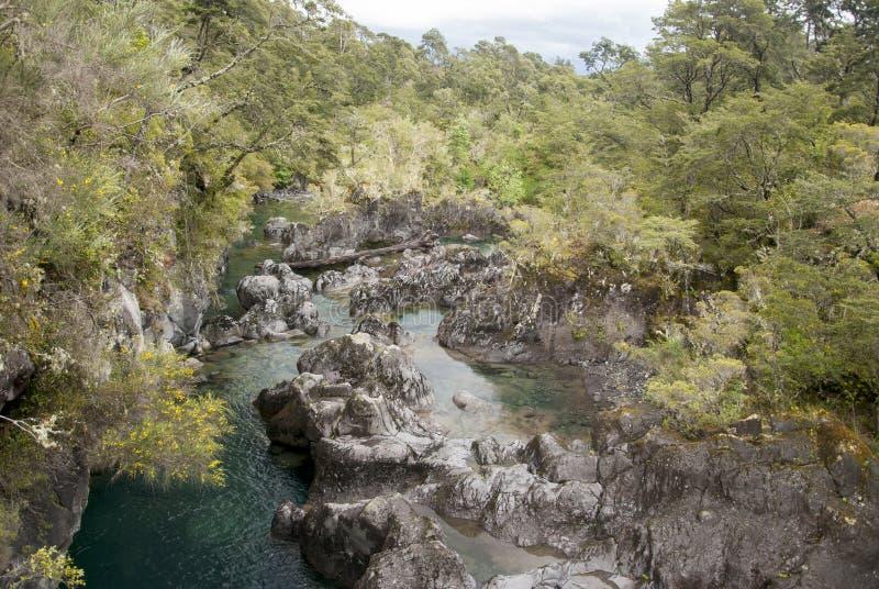Vista de Vicente Perez Rosales National Park - Chile foto de archivo