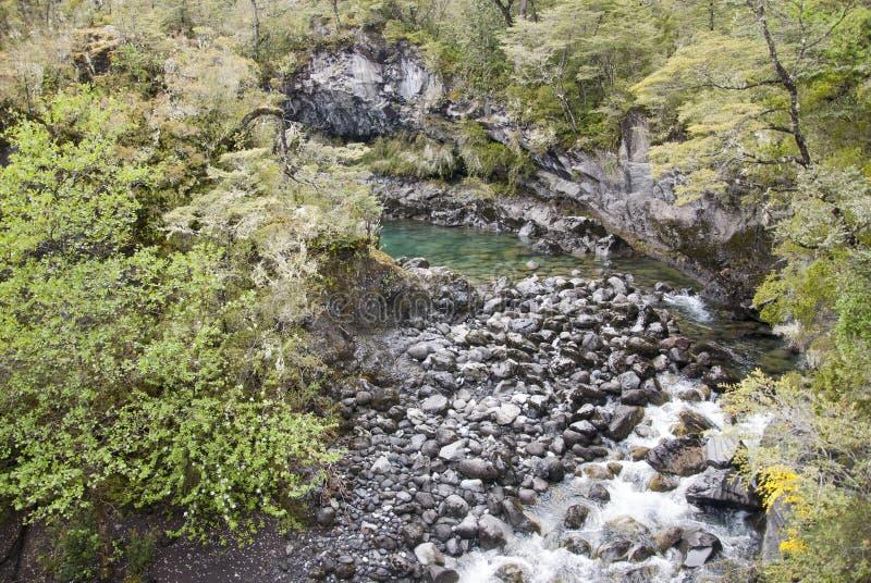 Vista de Vicente Perez Rosales National Park - Chile fotos de archivo