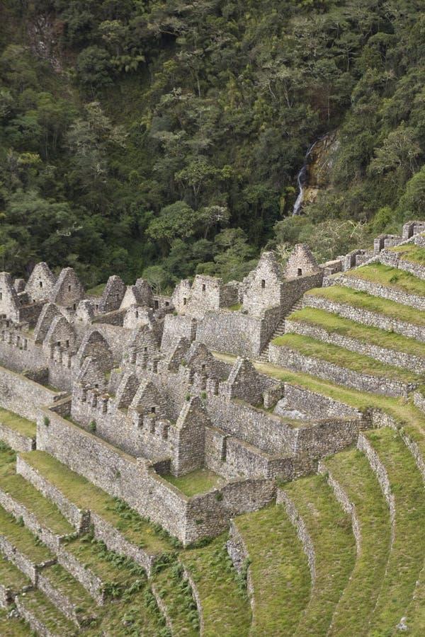 Vista de Winaywayna, ao longo de Inca Trail, Peru imagem de stock royalty free