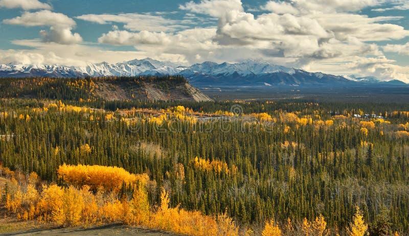 Vista de Wrangell - montañas del St Elias de Glenn HWY, Alaska imagen de archivo libre de regalías