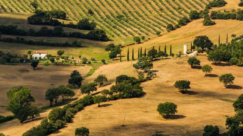 Vista dei campi e delle colline toscani nella regione di Maremma in Italia fotografie stock libere da diritti