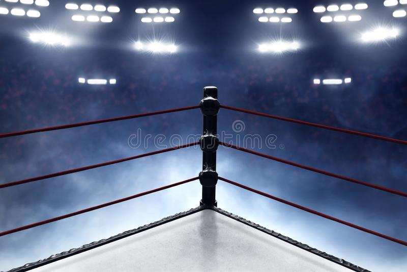 Vista dei ring professionali fotografie stock