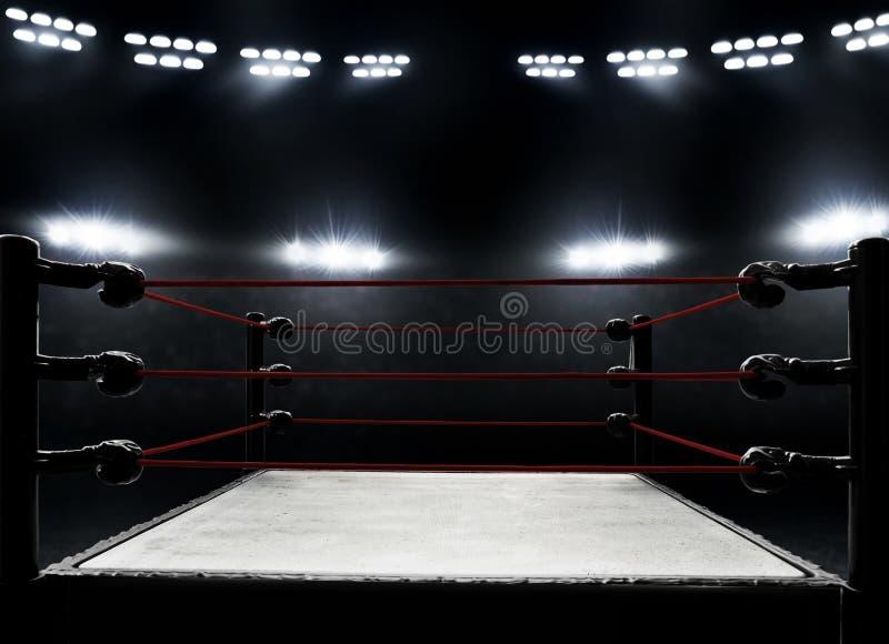 Vista dei ring professionali fotografia stock