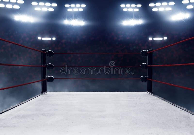 Vista dei ring professionali fotografia stock libera da diritti