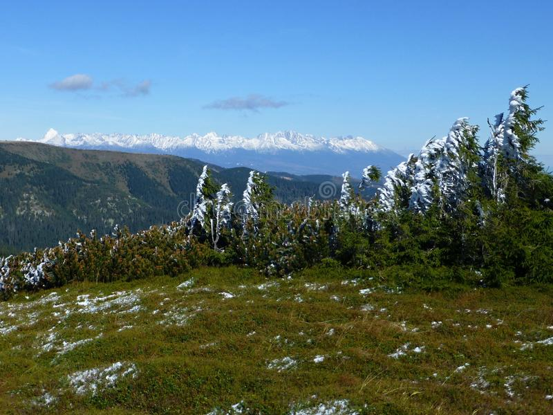 Vista del alto Tatras con los picos coronados de nieve, parque nacional bajo de Tatras, Eslovaquia foto de archivo