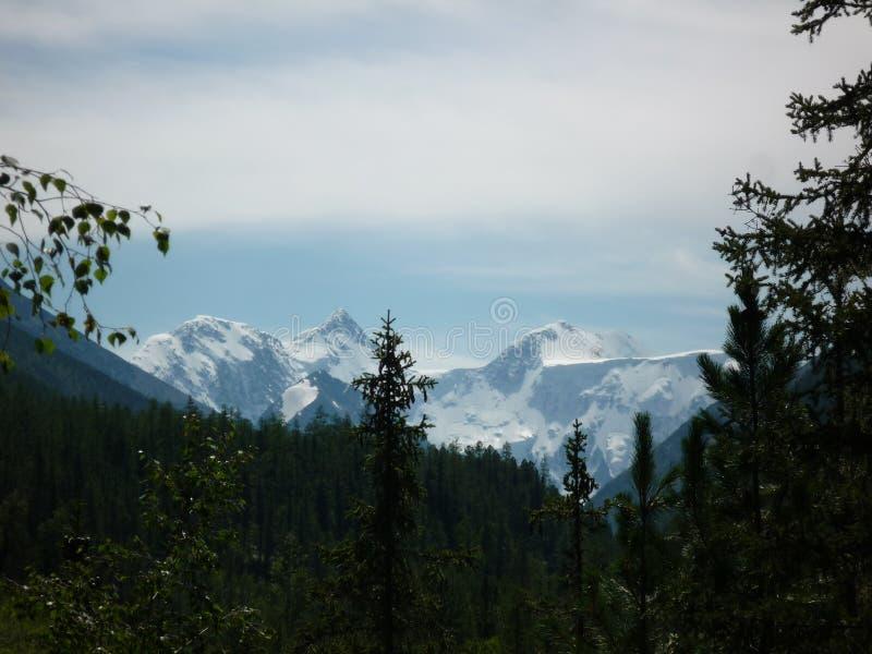 Vista del Belukha da lontano fotografia stock libera da diritti