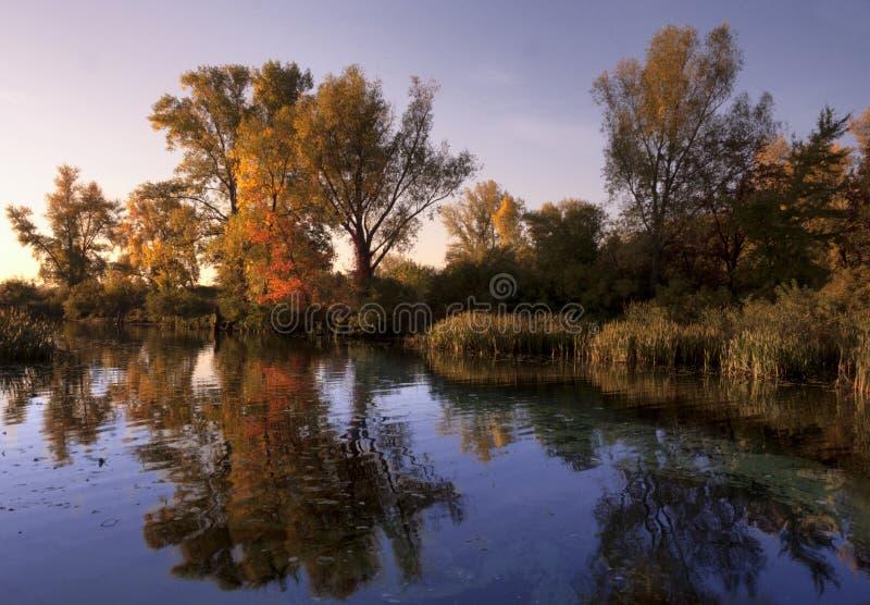 Vista del bosque y del río del otoño foto de archivo