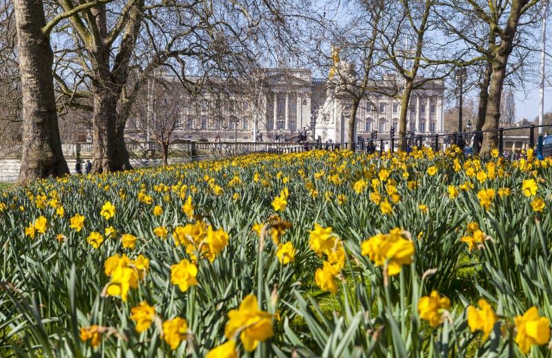 Vista del Buckingham Palace del parque de San Jaime en Londres fotografía de archivo