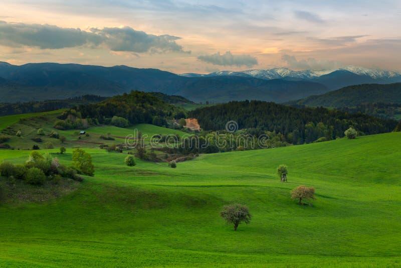 vista del campo y del prado de la montaña en el corazón de Europa imagen de archivo