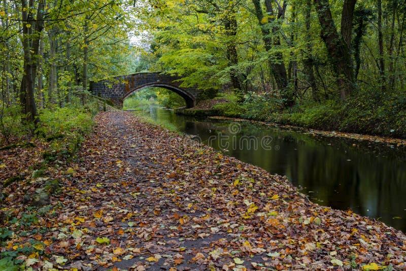 Vista del canale sul canale di Chesterfield immagini stock