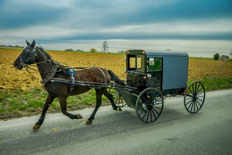 Vista del carrozzino di Amish su una strada con un cavallo in Pensilvania orientale fotografie stock
