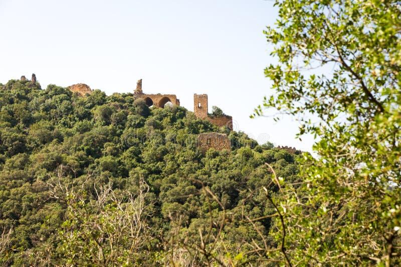 Vista del castello di Montfort fotografia stock libera da diritti