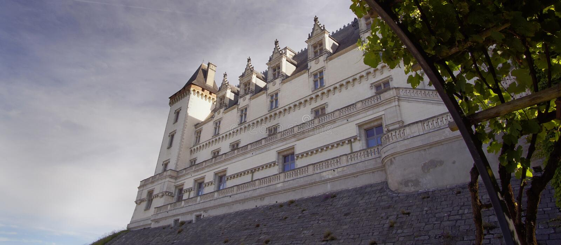 Vista del castello medievale di Pau, Pirenei Atlantiques, Francia fotografia stock libera da diritti