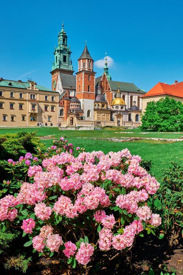 Vista del castillo de Wawel imagen de archivo libre de regalías