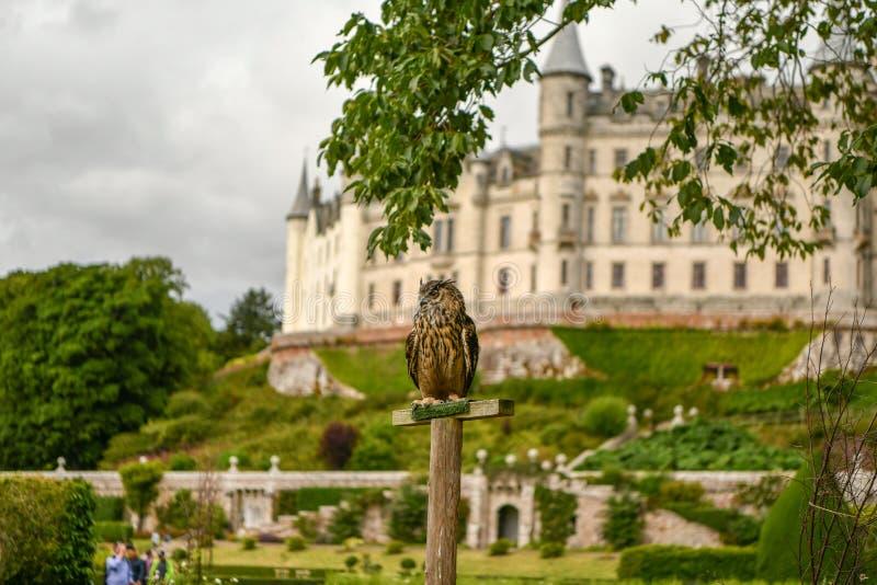 Vista del castillo Escocia Reino Unido de Dunrobin fotos de archivo