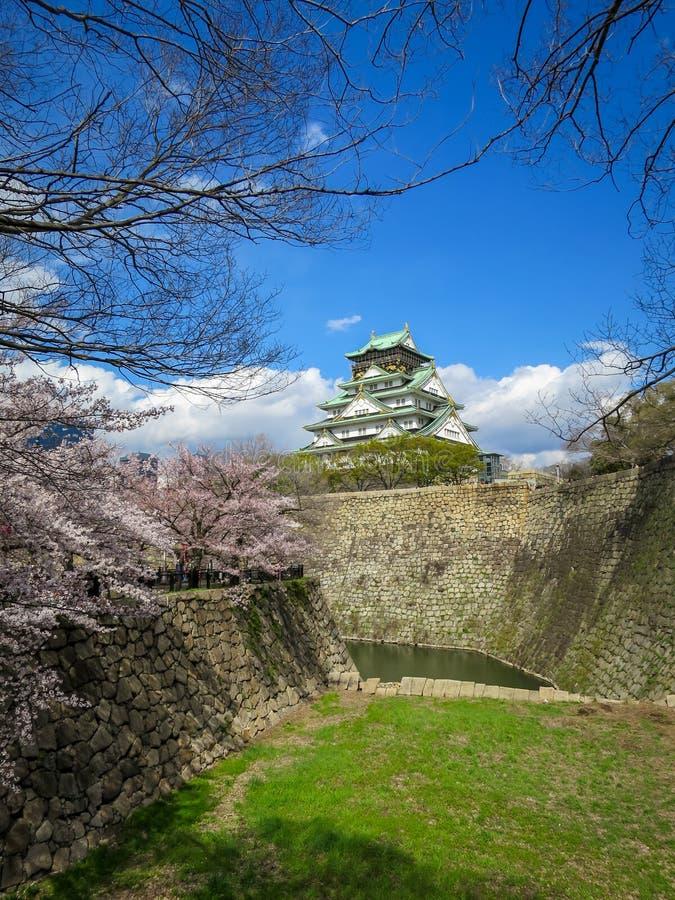 Vista del castillo hermoso de Osaka a través de ramas de la flor de cerezo, de la fosa de piedra del banco y del césped de la hie fotos de archivo