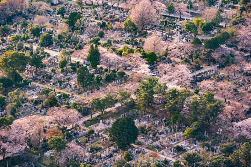 Vista del cementerio de Aoyama en Tokio, Jap?n imagen de archivo libre de regalías