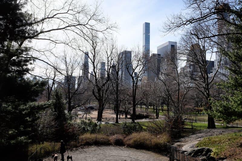 Vista del Central Park in New York immagine stock