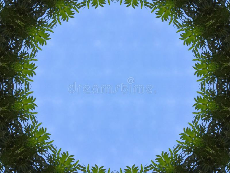 Vista del cielo blu dell'illustrazione dal tunnel dell'albero della giungla royalty illustrazione gratis