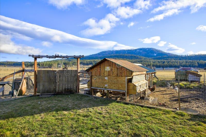 Vista del cortile posteriore con la gabbia di pollo in una piccola azienda agricola immagini stock