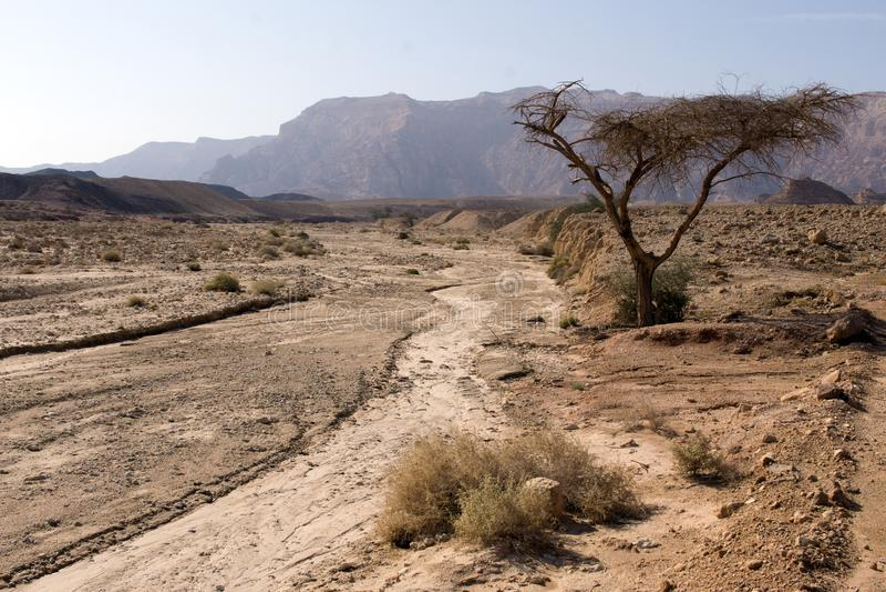 Vista del desierto israelí en otoño foto de archivo libre de regalías