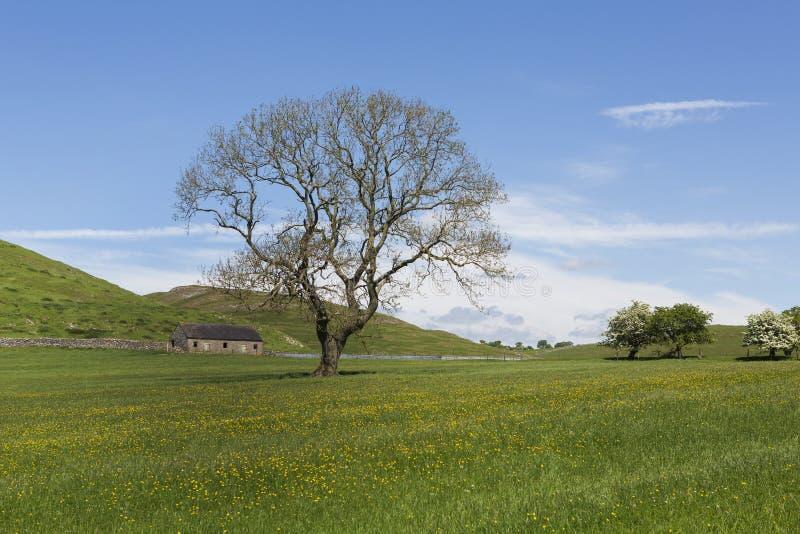 Vista del distrito máximo, Derbyshire, Reino Unido foto de archivo