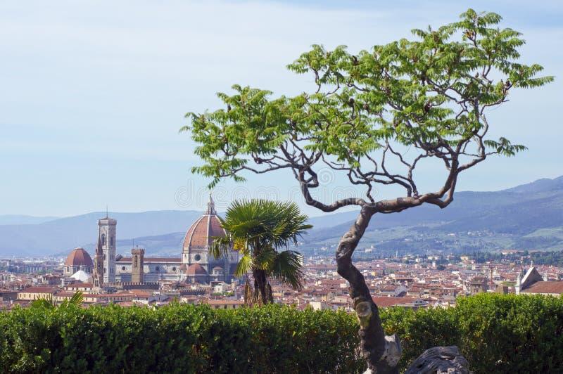 Vista del duomo (Firenze) immagine stock libera da diritti