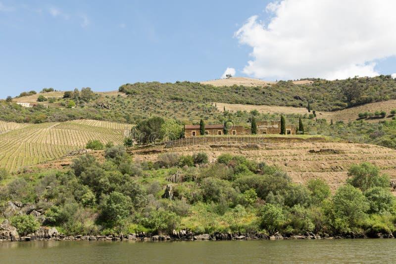 Vista del fiume, delle proprietà e delle vigne del Duero immagini stock libere da diritti