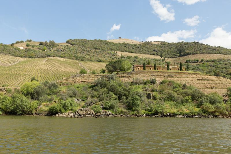Vista del fiume, delle proprietà e delle vigne del Duero immagine stock