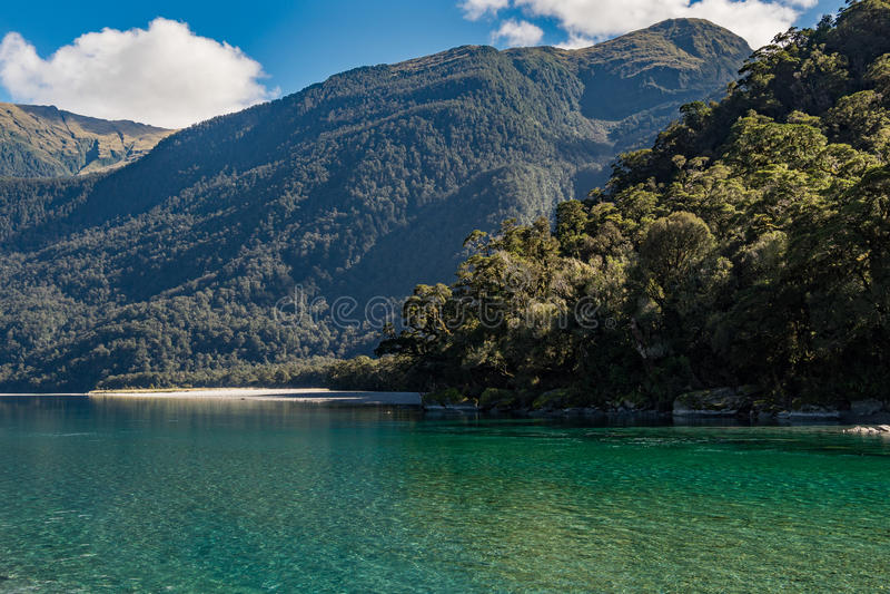 Vista del fiume di Hasst dall'urlo del Billy Falls Track, situata nel parco nazionale d'aspirazione di Mt, la Nuova Zelanda immagine stock