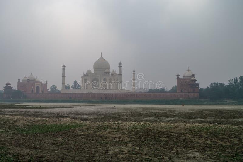 Vista del fiume di Yamuna e di Taj Mahal in nebbia di mattina da Mehtab Bagh o il giardino di luce della luna, Agra fotografia stock