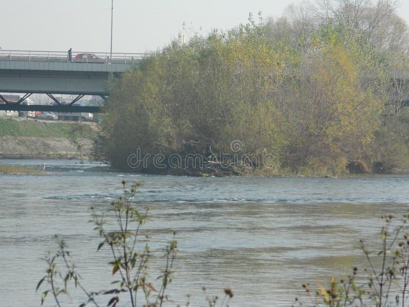 Vista del fiume e della vegetazione fotografie stock
