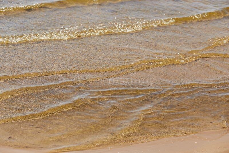 Vista del fondo sabbioso attraverso l'acqua con le riflessioni del sole per fondo o struttura immagine stock