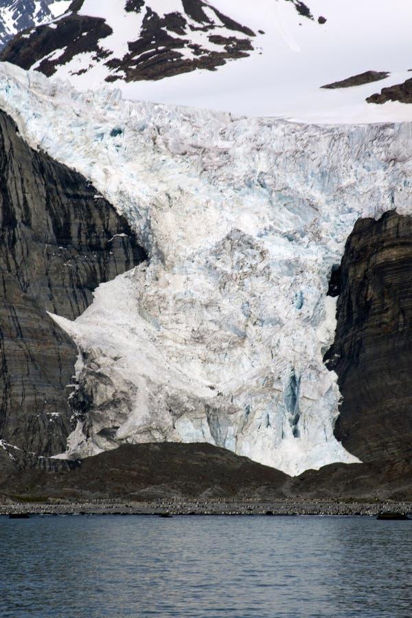 Vista del ghiacciaio dall'acqua con la colonia del pinguino alla base fotografie stock