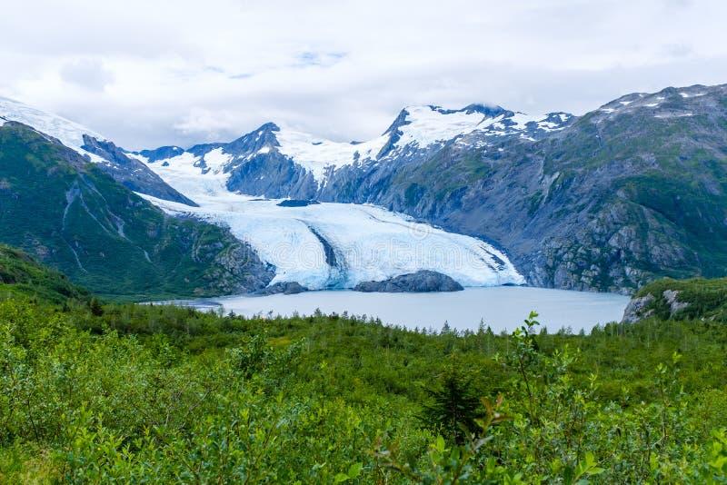 Vista del ghiacciaio di Portage nell'Alaska, U.S.A. fotografia stock libera da diritti
