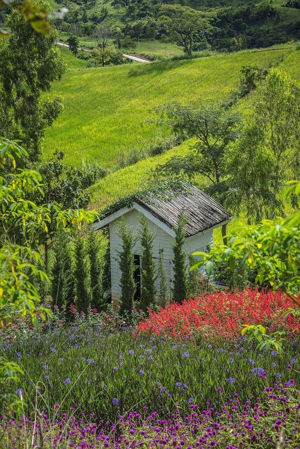 Vista del giardino immagine stock